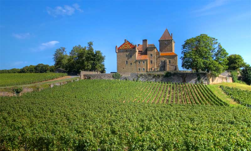 A grand house with colourful tiled roof on the peak of a hill covered in vines in Burgundy, France