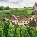 The best of Burgundy wine tours