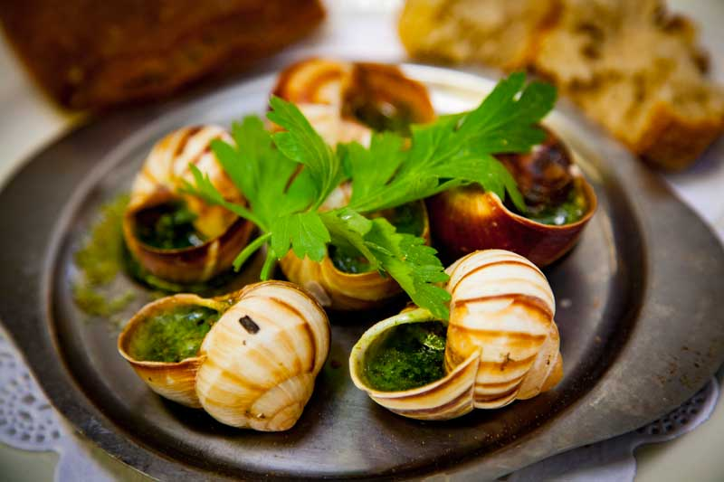 snails in garlic butter served in their shells