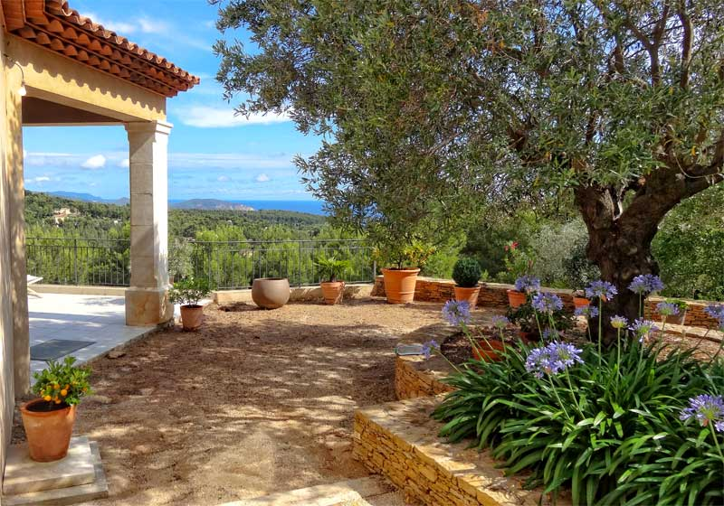 Terrace of a villa in Provence overlooking Mediterranean Sea with lots of plants