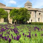 10 Tips for Provence visits