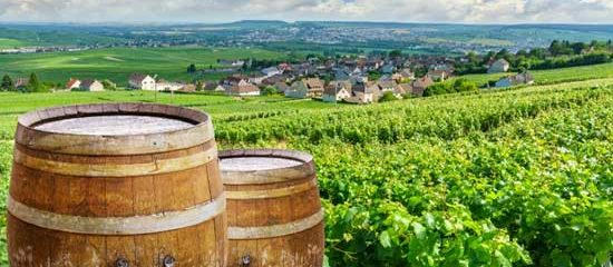 The best Champagne tours of Champagne