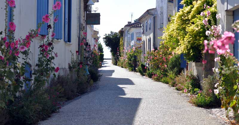 Street in Talmont-sur-Gironde, Charente-Maritime, filled with holly