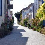 What to do in Talmont-sur-Gironde, Charente-Maritime