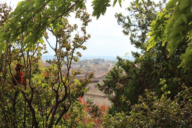View over Avignon through the lush foliage of the Rochers des Doms park
