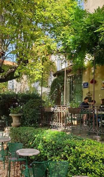People sitting under the shade of trees at a cafe in Provence