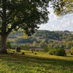 Expert property guide to Tarn-et-Garonne