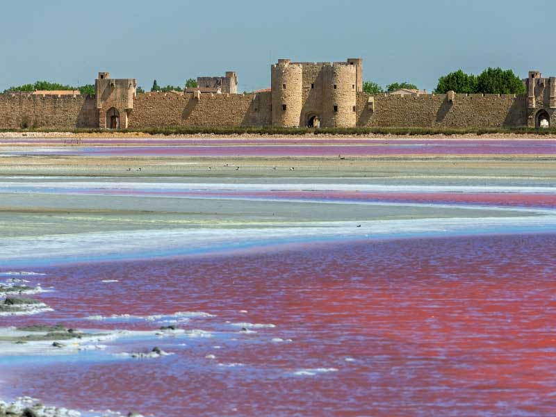 Pink lakes at Aigues-Mortes, caused by salt deposits, in the background, an ancient stone fort