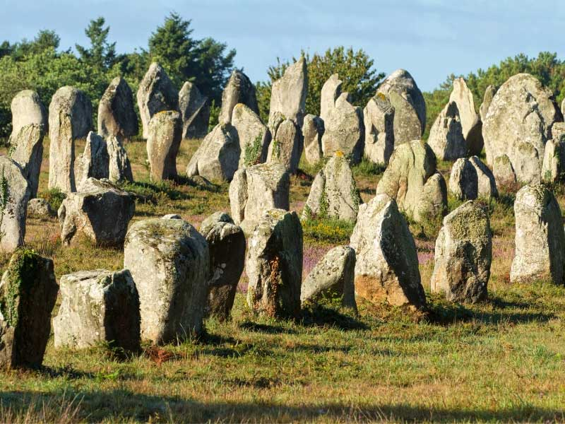 Close up of standing stones in Carnac, boulders worn by weather, grass growing at their bases