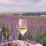 Rosé wine | The taste of summer in France