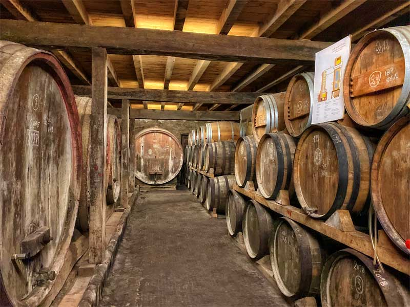 Wooden barrels stacked on top of each other in an Armagnac cellar