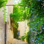 A perfect Spring tour of Provence