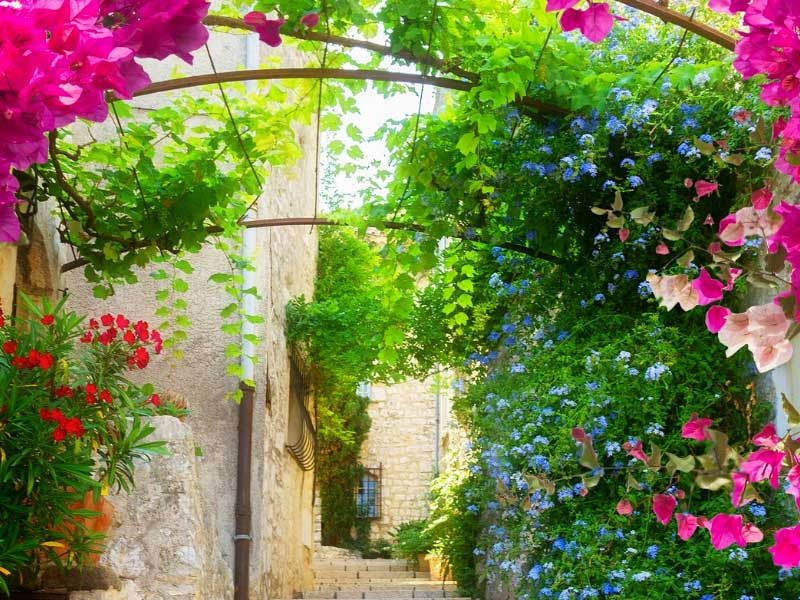 Cobbled street with an old building and flowers growing over a metal arch in Provence