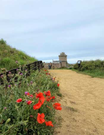 Ancient stone fort along a cliff top along a flower-lined path at Cap Frehel, Brittany