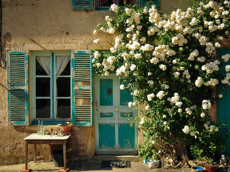 Roses growing around a door, shutters on a window, typically French style