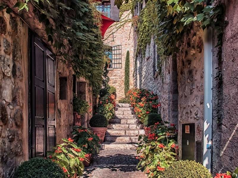 Cobbled street with steps, lined with pretty houses, plants growing in borders
