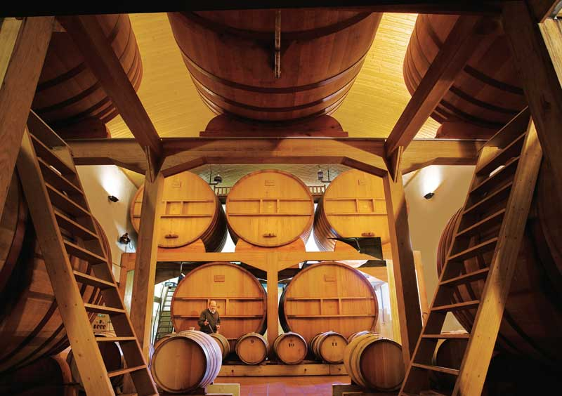 Man in a vast cellar filled with large wooden wine barrels